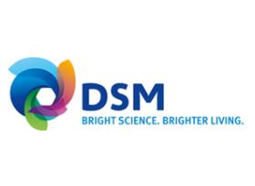 DSM Emmen